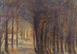 0Q249 Ismeretlen művész : Erdei fények