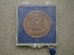 Szeged bronz Emlékérem