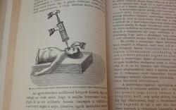Antik orvosi könyv: Dr.Oláh Gyula: Az ember és az egészség. 1899!!!