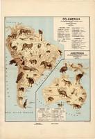 Dél - Amerika és Ausztrália állatföldrajzi térkép 1928, magyar nyelvű, 28 x 40 cm, állat, hal, madár
