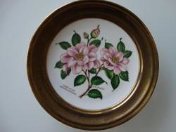 Kézzel festett porcelán dísztányér, Winterling Bavaria
