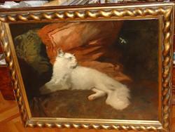 HEYER ARTÚR (THÜRINGIA 1872- BP. 1931 ) : ANGÓRA CICA MACSKA MÉHECSKÉVEL