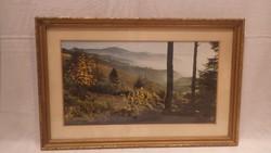 Üvegezett arany-fa képkeret , falc 27x45 cm