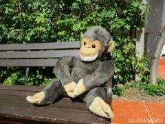 Majomparádé : régi retro nagy majom