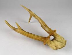 0T385 Régi vadász trófea őz agancs