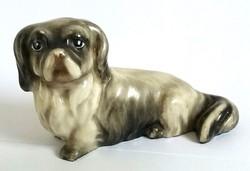 Drasche Palota-Pincsi kutya