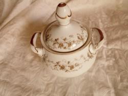 Szecessziós  kézzel festett  porcelán  cukortartó doboz