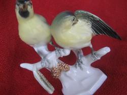 VOLKSTEDTER porcelán madarak