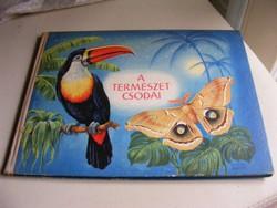 A természet csodái - régi képeskönyv gyerekeknek
