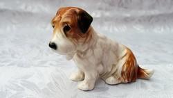 E N S kutya