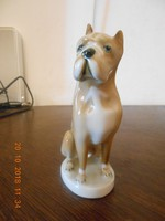 Zsolnay porcelán boxer kutya 1