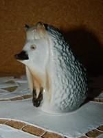 Lomonosov süni.