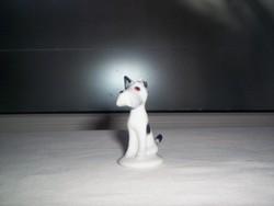 Kutya (274.)