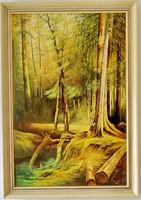Macsánszky Béla : Erdei patak (112 x 77 cm)