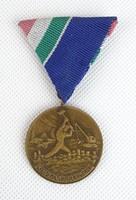 0T944 Régi bronz árvízi érdemérem plakett