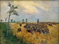 """Tull Ödön ( 1870-1911 ) """"  Birkanyáj"""""""