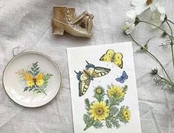 Kis váza cipővel és madarakkal a 19.sz.végéről és pillangós kis falitányér 12,2cm átm