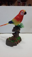 Csiripelő mozgó papagáj