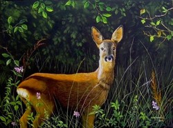 Őz az erdő szélén 30x40cm olaj-vászon festmény