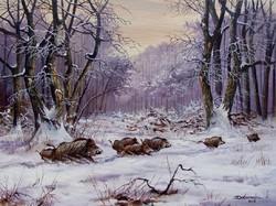 Konda az esti erdőben 30x40cm olaj-vászon festmény