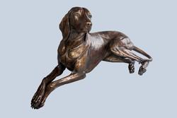 Életnagyságú fekvő Magyar Vizsla  bronz szobor