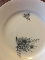 Német porcelán 6 személyes sütis készlet
