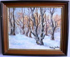 Takár Emőke téli tájkép igényes keretben 30 x 20 cm