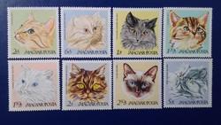 1968. Macskák