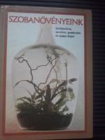 Szobanövények/Növényápolás
