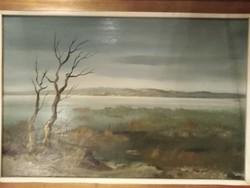 Reinhardt István(1936-)Nádas című Képcsarnokos olajfestmény.