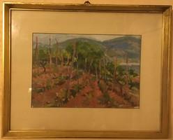 Radnai József (1896-1963): Kert a hegyoldalon, olaj, karton, jelzett, üvegezett, keretben 23 X 34 cm