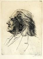 Szalay - Liszt Ferenc Portré 38x30cm Rézkarc Metszet Hidegtű