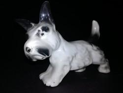 Porcelán kutyus - EP