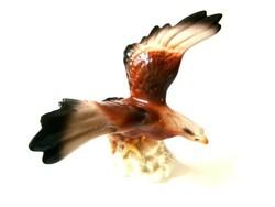 Iris Cluj porcelán...a sas leszáll...gyönyörű madár