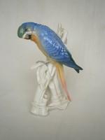 ENS porcelán papagály