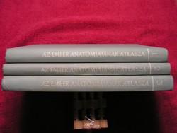 Az ember anatómiájának atlasza .  I - II - III.  lötet.