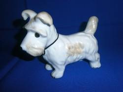 Nagyon aranyos, jelzett porcelán kutya 14 cm hosszú