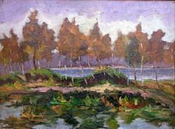 """Bosznay István ( 1868-1944 ) """" Tükröződő fények """""""