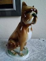 Zsolnay  porcelán boxer kutyája!
