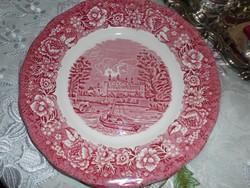 Palissy angol porcelán lapos tányér.