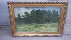 Üvegezett arany-fa képkeret falc 32x53 cm