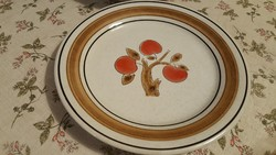 Extra nagy méretű tányérok gyümölcs mintával. 2500 Ft/2 db