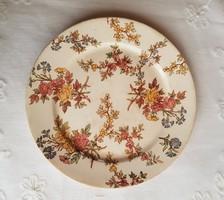 Sarreguemines tányér
