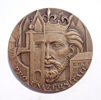 Csúcs Viktória, A Pécsi Orvostudományi Egyetem Emlékérme / Pro Universitate bronz plakett
