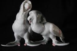 Porcelán kapicinus galambpár figura