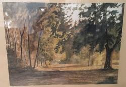 Psik Lajos, Hédervári erdő, akvarell