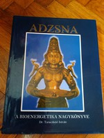 Dr. Taraczközi István Anzsna A bioenergetika nagykönyve