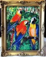 Czinóber - Amazónia  ( 32 x 24, gyönyörű keretben )