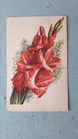 Régi virágos képeslap, kardvirágos üdvözlő lap