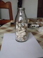 Régi tejesüveg